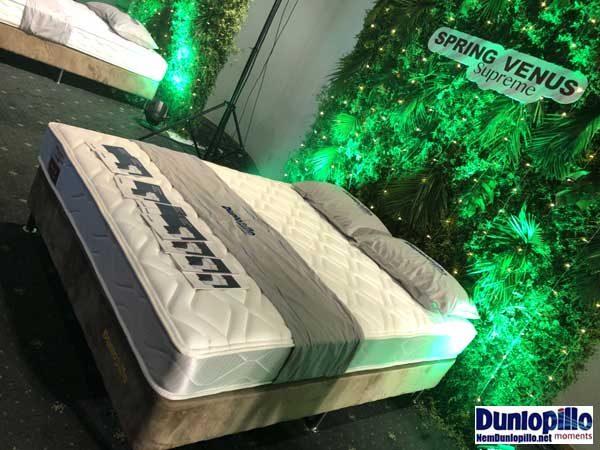 Nệm lò xo Venus Dunlopillo - kiểu dáng sang trọng, chất lượng Châu Âu
